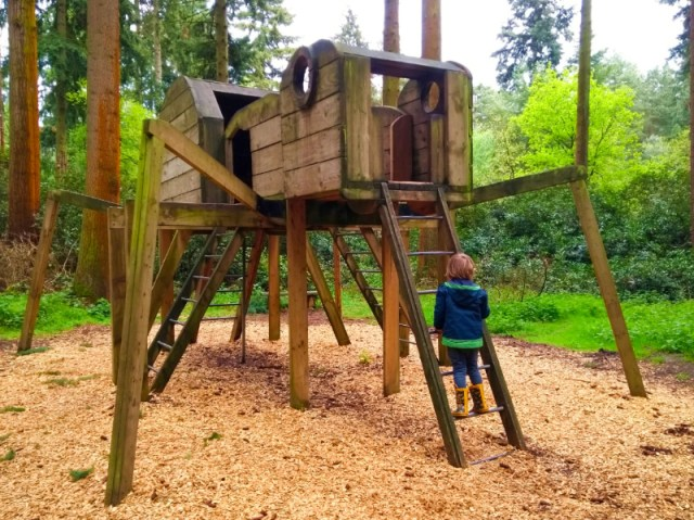 Thetford Forest is a great day out from Cambridge