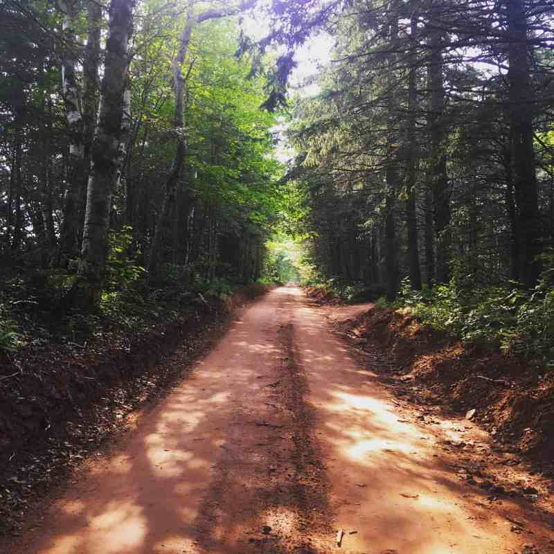 prince edward island red road