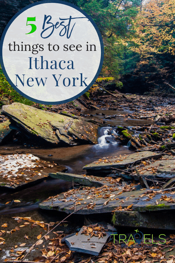 There are so many things to do in Ithaca, NY. Waterfalls, hikes, stroll downtown and an apple festival