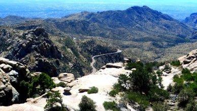 Drive up Mount Lemmon