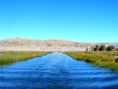 Totora reed beds Lake Titicaca Peru
