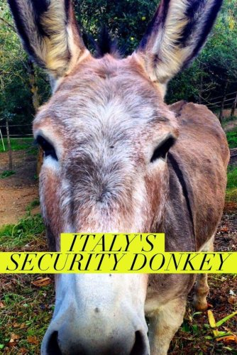 Hotel donkey security image