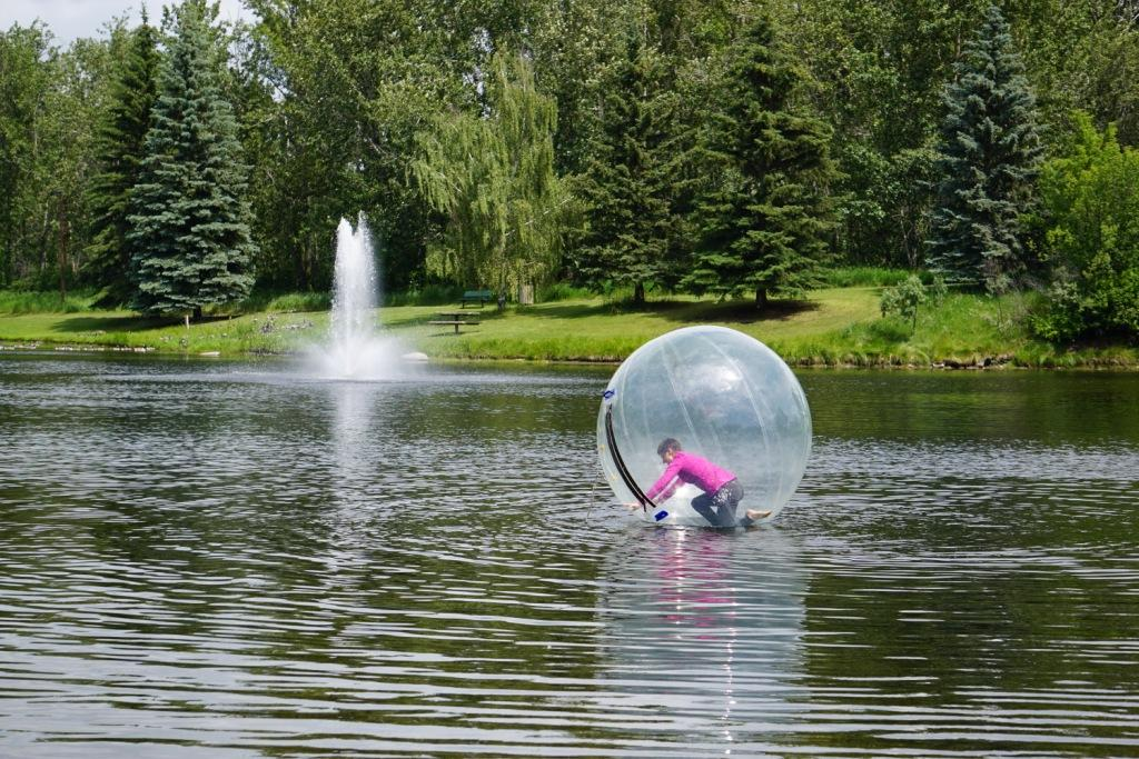 All Season Fun Things To Do In Red Deer Travel Tales Of Life