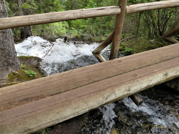 Bridge on Grassi Lakes Trail