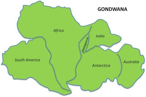 Gondwana - Super Continent