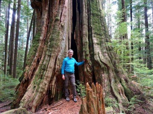 Hiking Big Cedar Trail