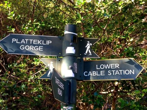 Hiking Table Mountain trail signs