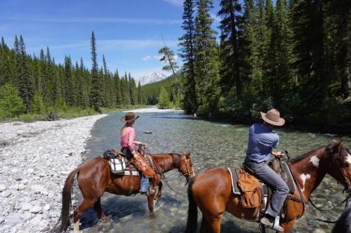Horseback riding in Banff