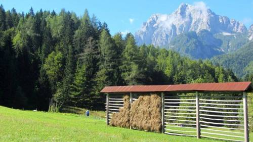 slovenian hay racks or toplars