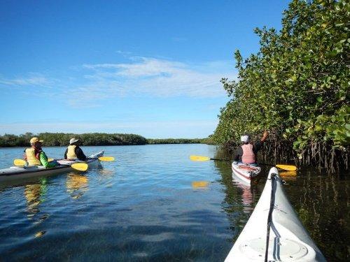 Kayaking Magdalena Bay