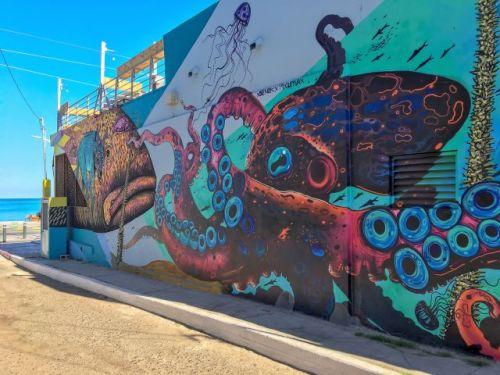 Murals La Paz Mexico