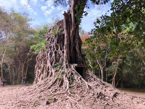 Daem Chrei Temple Sambor Prei Kuk