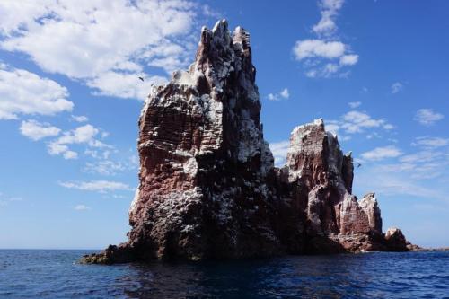Sea of Cortez los Islotes