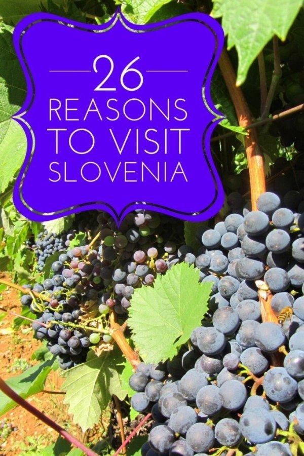 Pinterest slovenia