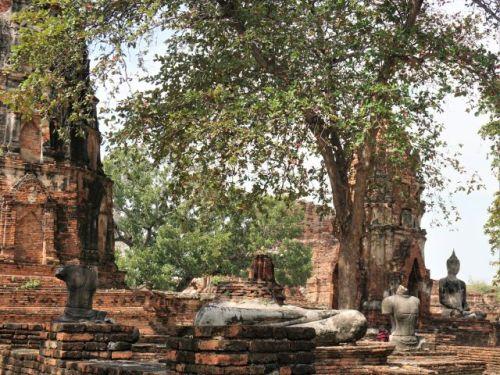 headless buddhas Ayutthaya