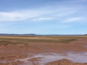View of Minas Basin and Cape Blomidon