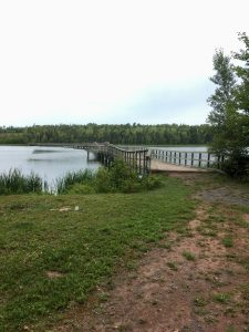 Bridge over MacLure's Pond, at the Former Eagles View Golf Course