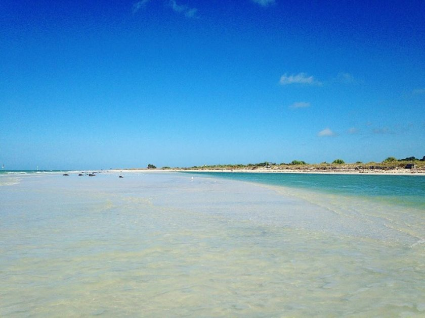 Day Trip Guide: Dunedin, FL - Visit Honeymoon Island State Park
