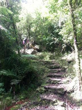 pororari-river-stairs