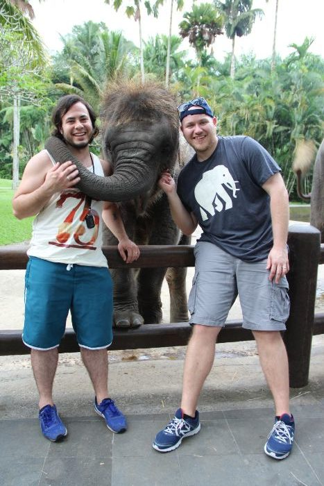 elephant in Bali