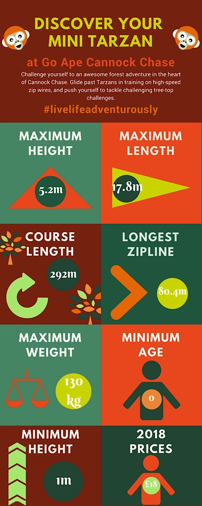 Go Ape junior infographic