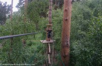 Swinging bridge crossings at Go Ape