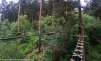 one of the rickety crossings at Go Ape