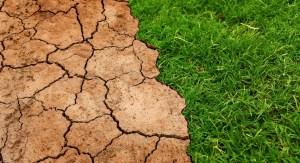 terreno desertificato