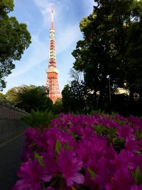 vista della tokyo tower traveltherapists fiori viola