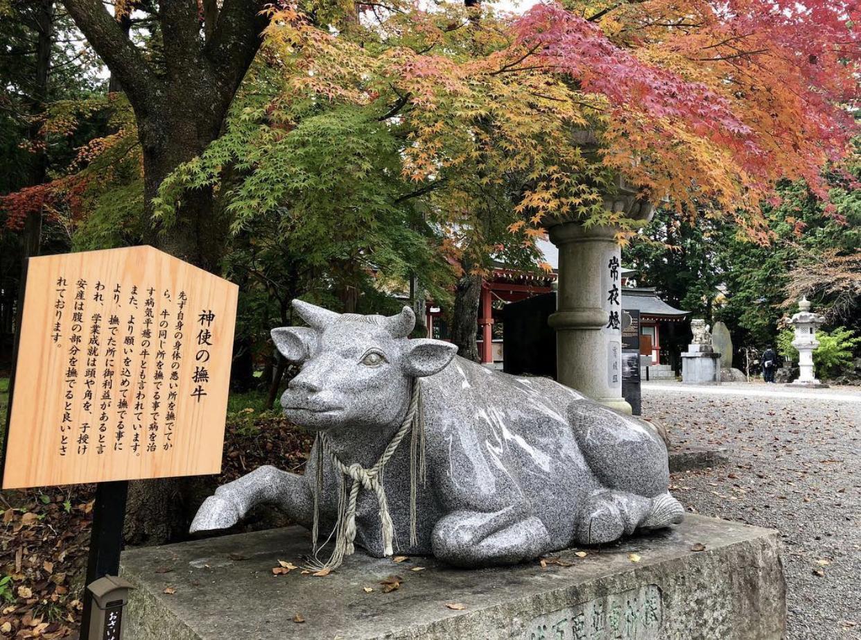 anno del bue 2021 zodiaco cinese traveltherapists il mio viaggio in giappone