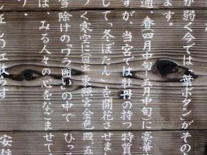 Lingua della Cina e del Giappone il mio viaggio in giappone traveltherapists Giappone kanji hiragana katakana