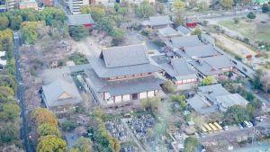 vista sul tempio Zojoji