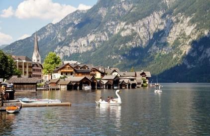 Hallstatt lago con cigni Hallstatt città più bella del mondo