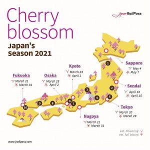 mappa fioritura Hanami 2021 cherry blossom Fioriture record dei ciliegi in Giappone
