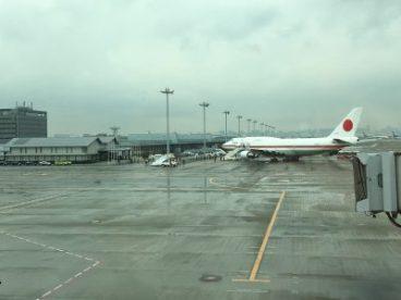aereo japan airlines il mio viaggio in giappone traveltherapists miglior blog di viaggio