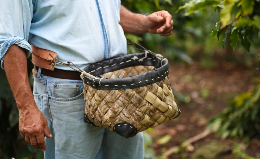 Kona Coffee Living History Farm (5 of 6)