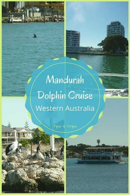 A Mandurah Dolphin Cruise offers a great day trip from Perth to escape the city