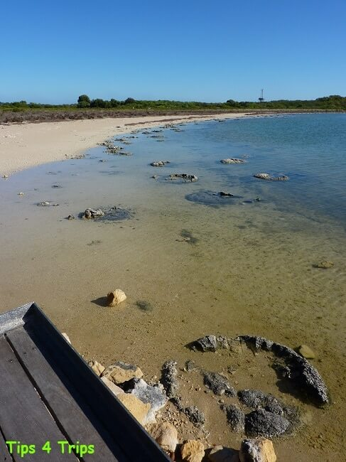 Lake Thetis boasts examples of 3500-year-old stromatolites and thrombolites. Learn what to expect at Lake Thetis located near Cervantes and the Pinnacles.