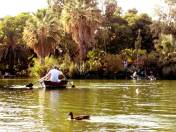 Romantic time at CIUTADELLA PARK