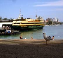 Manly Wharf - Sydney, NSW, Australia