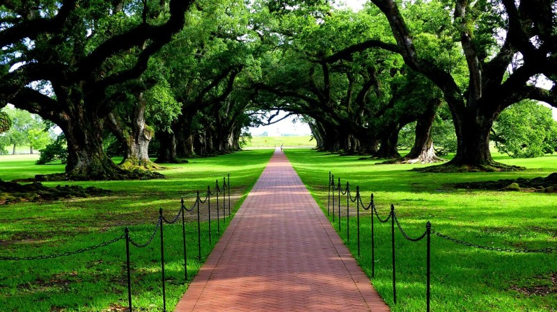 Best Places to Visit in Louisiana