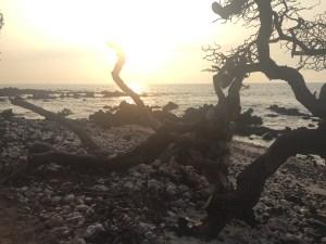 Sunset big island hawaii hawaï usa roadtrip travel blog voyage traveltothemoonandback travel to the moon and back
