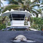 Big island hawaii road trip usa travel blog voyage travel to the moon and back traveltothemoonandback