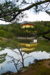 Kinkaku-ji kyoto kansai japan travel blog asie traveltothemoonandback pavillon or