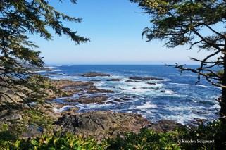 Wild Pacific Trail (17)