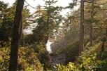 Wild Pacific Trail (23)