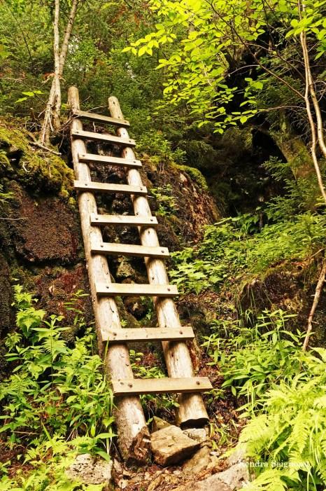 Adirondacks trail ladders