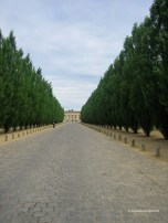 Versailles Gardens (18)