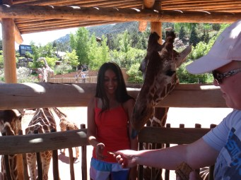 Me feeding the giraffe – Now