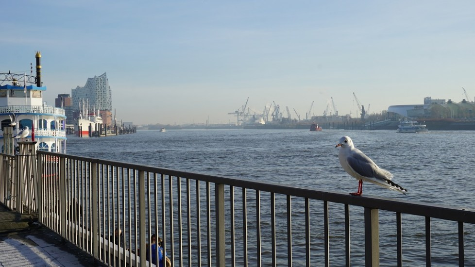 Zicht op water in haven van Hamburg